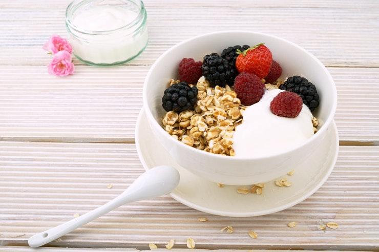 digestão e nutrição